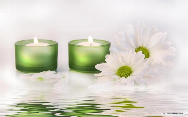 _wsb_635x397_candles_daisies